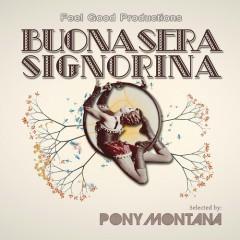 Sound Nomaden – Akkordeon Hipsters (feat. Cab Canavaral & Anja Kreysing)