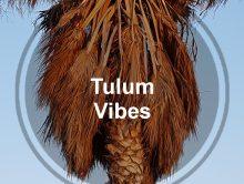 Tulum Vibes Spotify Playlist